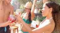 Group Of Friends Having Summer Party With Barbeque video