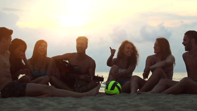Group of friends party at the sea video