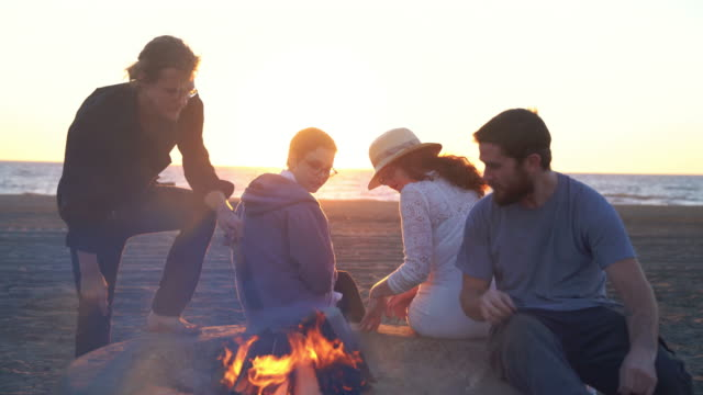Group of friends relaxing at the beach video