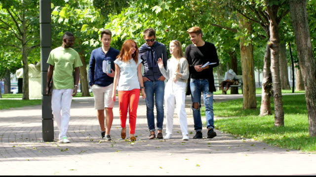 Group of happy students with notebook on footpath outdoor video