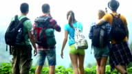 Group of hikers at top of the hill,enjoying panorama. video