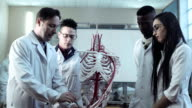 Group of medical students at an anatomy lecture video