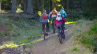 SLO MO Group of mountain bikers going up forest trail video