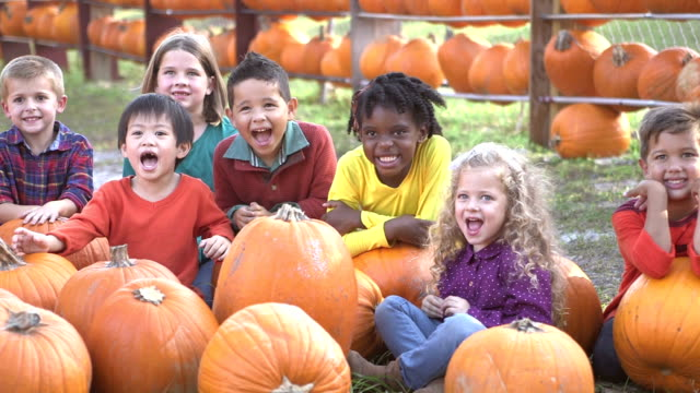 Group of multi-ethnic children at sitting with pumpkins video