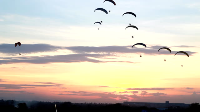 Group of parachute or paramotor fly in sunset, sport activity, high definition clip, Thailand. video