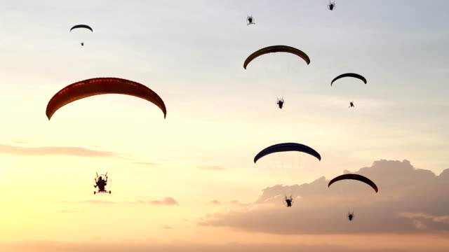 Group of paramotor fly in sunset video