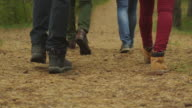 Group of people in close-up leg shot walk in the forest in autumn. video