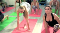 Group of people performs sports exercises video