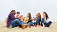 Group of People Playing Music at a Beach Party video