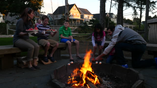 Group of people roasting marshmallows on campfire video