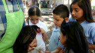 A group of private elementary school students learn about chickens from a farmer on a class field trip video