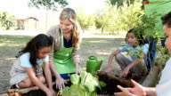 A group of private school elementary students learn from female farmer about gardening video
