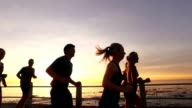 Group of runners in sunset video