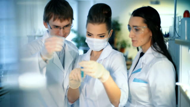 Group of scientists working at the laboratory video