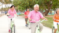 Group Of Senior Friends Having Fun On Bicycle Ride video