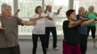HD: Group Of Seniors Exercising With Tai Chi video