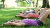 Group of Women Exercising in the Park video
