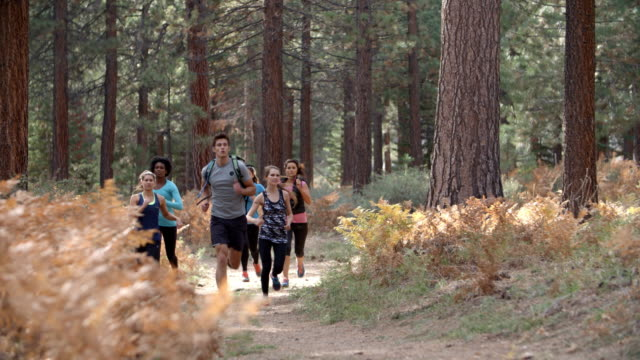 Group of young adult friends run past camera in a forest video