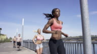 Group of young adult runners running in the city along the waterfront video