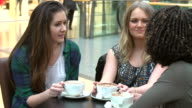 Group Of Young Female Friends Meeting In Café video