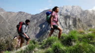 Group of  young friend hiking in mountain video