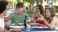 Group Of Young Friends Enjoying Meal In Outdoor Restaurant video