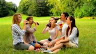 Group of young people spending time together in nature video