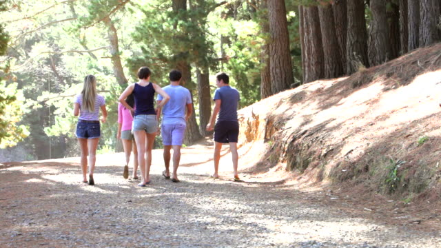 Group Of Young People Walking Along Woodland Path video