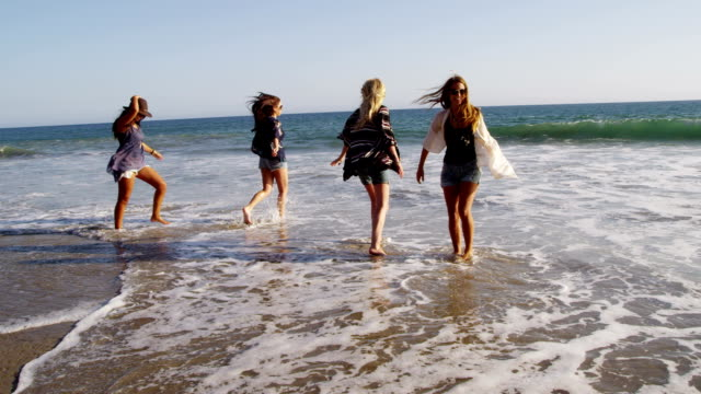 Group of young women at beach video