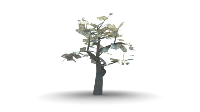Growing Tree of Hundred US Dollars video