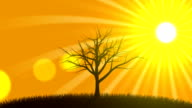 Growing Tree with Sunset (Animated Background) video
