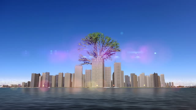 Growing Trees in the Urban Environment video