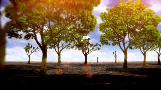 Growing trees LOOP video