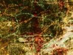 PAL: Grunge background loop 6 video