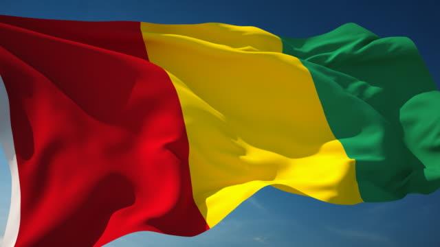 4K Guinea Flag - Loopable video