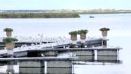 Gull On Pier. River pier in windy weather video