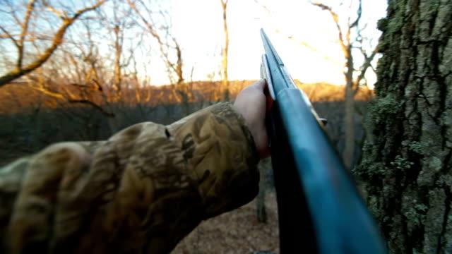 Gun Shot video