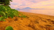 WS DS Gunung Batur From Sanur Beach video