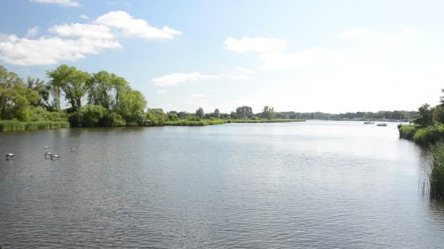 Haarlem landscape video