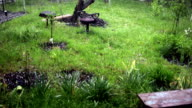 Hail storm ice falling on ground. spring weather. video