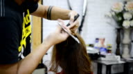 Hairdresser trimming brown hair with scissors video