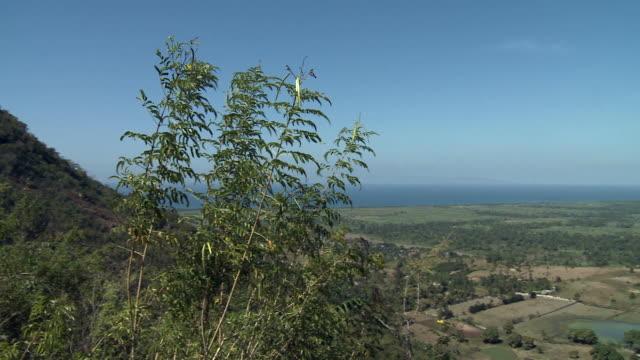 Haiti Farmland video