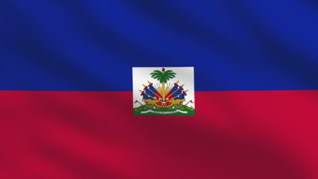 Haiti flag video