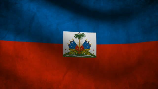 Haiti flag. video