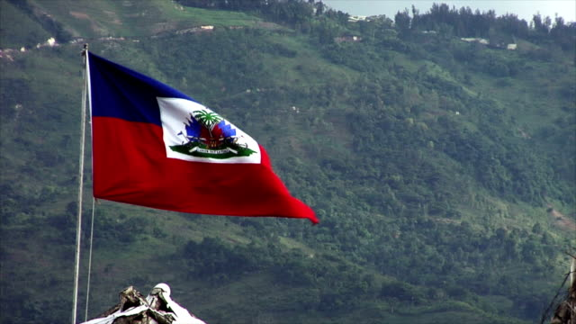 Haitian Flag Flapping in the Breeze video