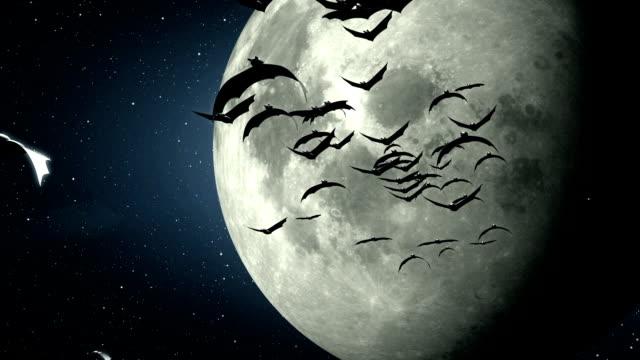 Halloween abd bats video