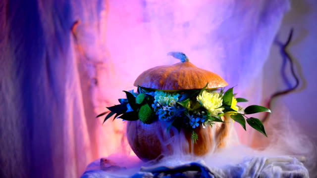 Halloween, filled with holiday traditions, symbols and details. Flower arrangement on the basis of the pumpkin video