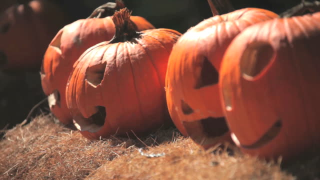Halloween Pumpkins video