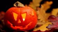 Halloween Pumpkins video