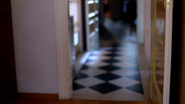 Hallway in the house video